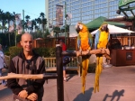 Joe and Macaws, Flamingo Casino and Resort Las Vegas