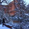 Joe Emerald Pools Zion National Park