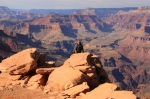 Sharni Ooh Aah Point Grand Canyon National Park