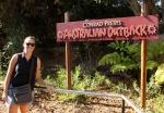 australian outback san diego zoo