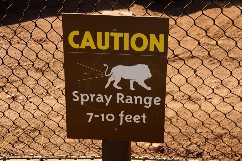 lion spray warning at san diego zoo