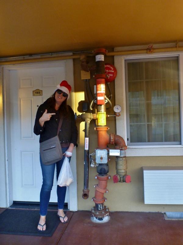 sharni admiring piping at hotel in healdsburg
