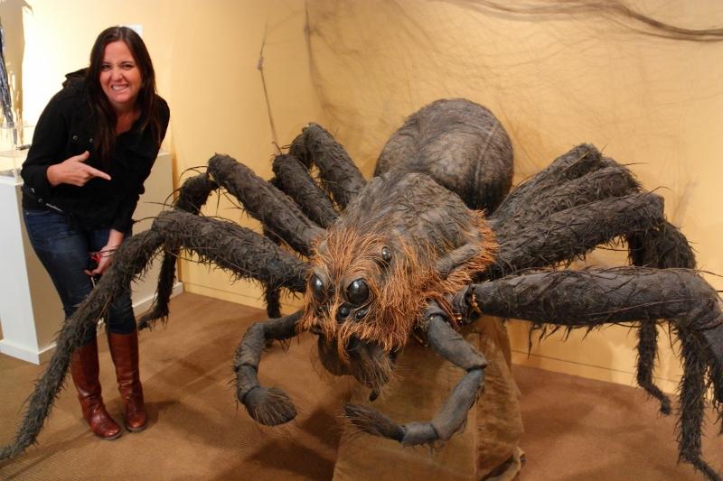 hollywood studios harry potter spider