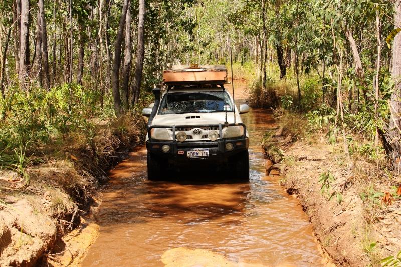 Bog hole Frenchmans Track