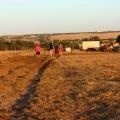 walking around the farm