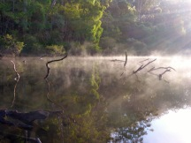early morning mist warren river