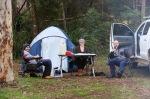camping at big brook aboretum