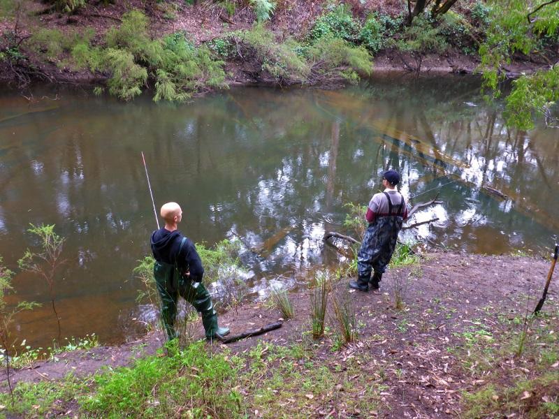 fishing for trout warren river