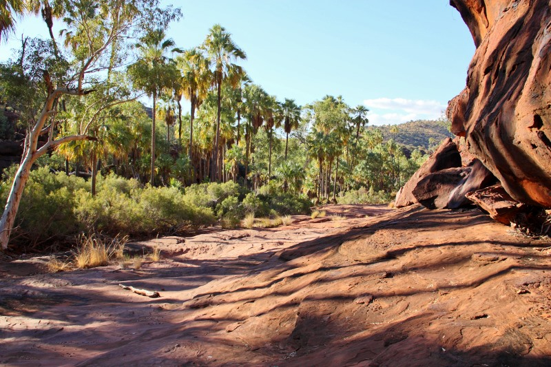 palm valley walking trail