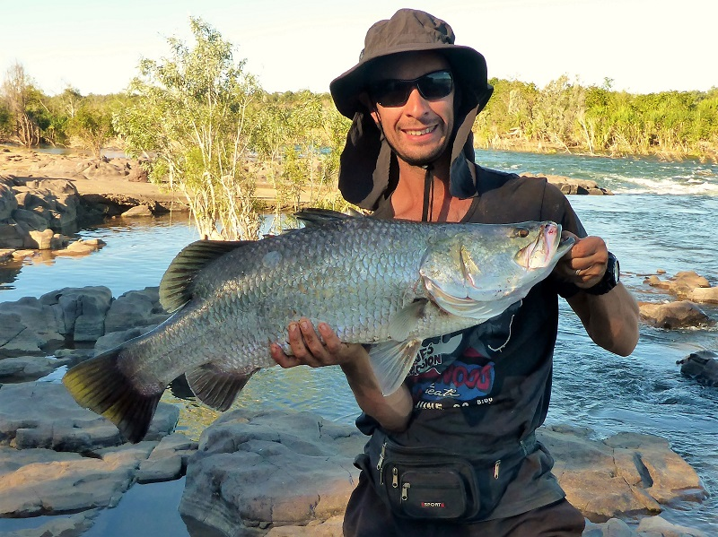 big barramundi ord river