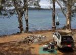 camping arthurs lake tasmania