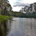 mersey river near latrobe trout fishing