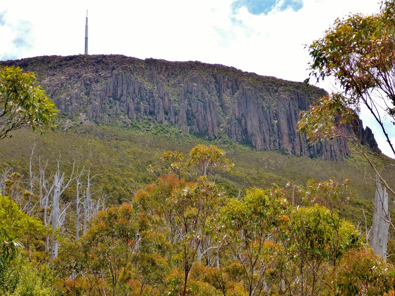 mount wellington from walking trail
