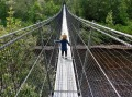 Tahune airwalk bridge