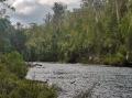 Tahune airwalk cantilever from river