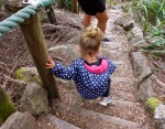 tarkine walk steps
