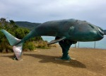 cockel creek whale lookout