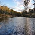mersey river fishing tasmania