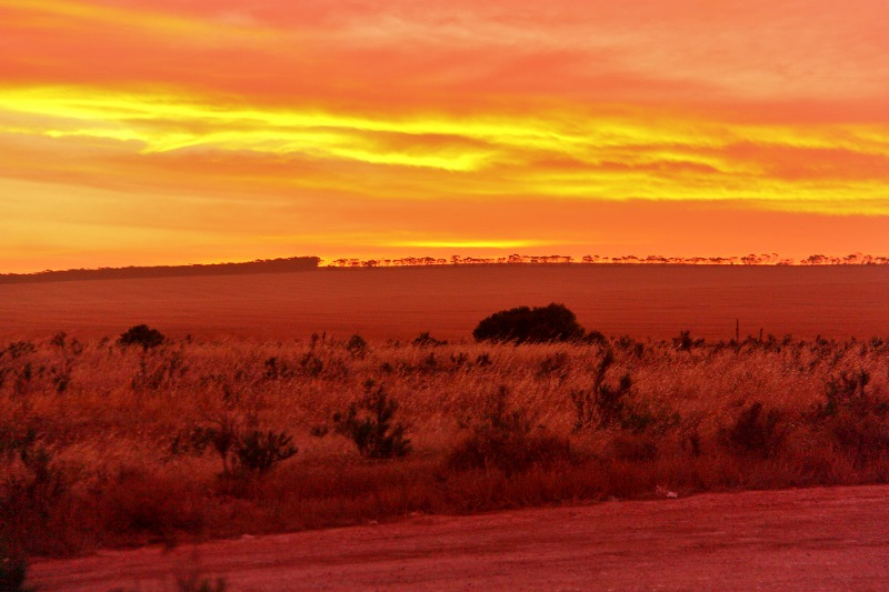 nullarbor plains nundroo sunset