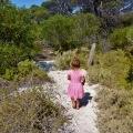 walking track around eyre bird observatory