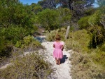 walking track around eyre bird observatory
