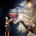 artvo museum t-rex feeding time